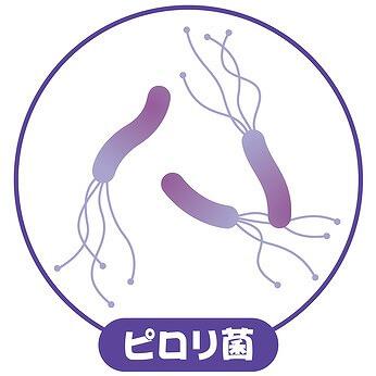 そもそも ピロリ菌って?
